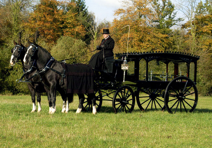 horse drawn carriages goodwins funeral directors